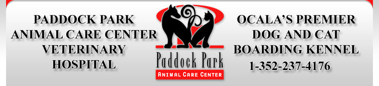 Ocala veterinary animal hospital, emergency pet care Ocala Fl, Ocala animal hospitals, Ocala vet hospital